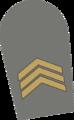7 - Segundo-sargento.png