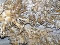 91 Helictites (travertine) 17 (8325813704).jpg