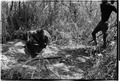ASC Leiden - Coutinho Collection - 13 07 - Campada college on the northern frontline, Guinea-Bissau - Digging trenches - 1973.tif
