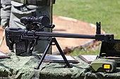 ASVK Kord-M 6V7M - 4thTankDivisionOpenDay17p2-28.jpg