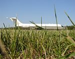 A bed of grass with a DC-9 in it (540678974).jpg