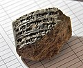 A fragment of a clay tablet with a cuneiform inscription, unearthed September 2014 at Bakr Awa, Sulaymaniyah, Iraq.jpg