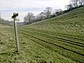 A junction of paths near Warningcamp Hill, Sussex - geograph.org.uk - 802627.jpg