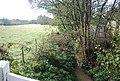 A tributary of Powdermill Stream, Telham Lane - geograph.org.uk - 1577034.jpg