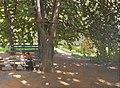 A vasnetsov shadows.jpg