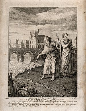 Plagues of Egypt - The Second Plague: And Aaron stretched out his hand over the Waters of Egypt and the Frogs came up and covered the Sand of Egypt etching