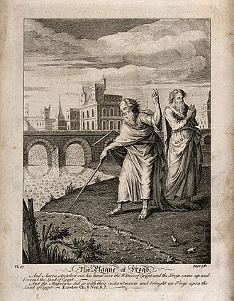 Plagues of Egypt - Image: Aaron points his rod at the river and it begins to flow with Wellcome V0034268