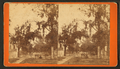 Abercorn Street, Savannah, Ga, by Ryan, D. J., 1837-.png
