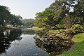 Acharya Jagadish Chandra Bose Indian Botanic Garden - Howrah 2011-01-08 9775.JPG