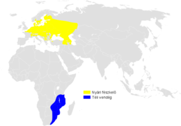 Acrocephalus palustris distribution map-hu.png