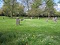 Acton Park Gorsedd stones (21).JPG