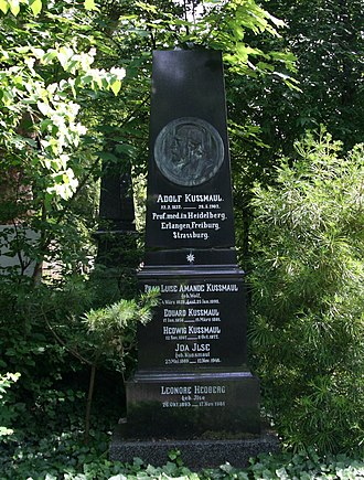 Adolph Kussmaul - His grave in Heidelberg