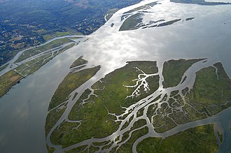 Lewis and Clark National Wildlife Refuge - Image: Aerial View of Russian Island, Lewis and Clark National Wildlife Refuge