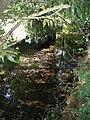 Afon Alyn - geograph.org.uk - 249695.jpg