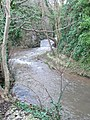 Afon Ffyddion - geograph.org.uk - 658197.jpg