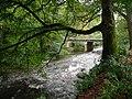 Afon Ystwyth at Trawsgoed - geograph.org.uk - 257126.jpg