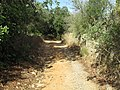 Albufeira, Country lane with dry stone wall in Enxertia (1).JPG