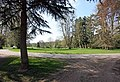 Albury Park - geograph.org.uk - 1277741.jpg
