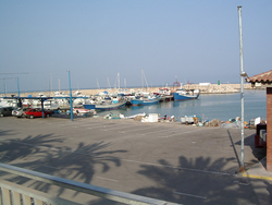Alcanar's harbour