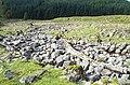 Alluvial Fan, Allt Coire Chailein - geograph.org.uk - 444902.jpg