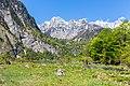 Alpes de Berchtesgaden, Alemania, 2019-05-17, DD 51.jpg