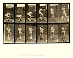 Animal locomotion. Plate 397 (Boston Public Library).jpg
