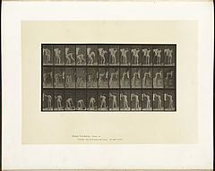 Animal locomotion. Plate 434 (Boston Public Library).jpg