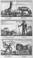 Anonyme - L'Abécédaire du petit naturaliste, 1812 - p 026.png