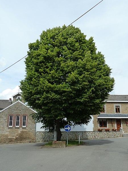 Linde, Limont, Anthisnes, België