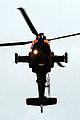 Apache (5090039744).jpg