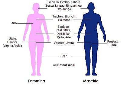 semi usati per il cancro alla prostata