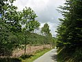 Approaching a bend in the Cwmheisian road - geograph.org.uk - 494804.jpg