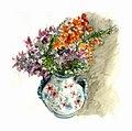 Aquarelle- bouquet de fleurs du jardin (6573762993).jpg