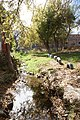 Arroyo, Fraccionamiento Urdiñola, Saltillo Coahuila - panoramio (5).jpg