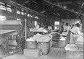 Aspecto Interno da Lavanderia a Vapor em Porto Velho - 537, Acervo do Museu Paulista da USP (cropped).jpg