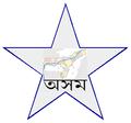 AssamBarnstar.png