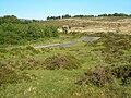 At Ephraim's Pinch - geograph.org.uk - 1582915.jpg