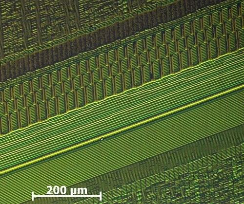 Aufnahme einzelner Magnetisierungen gespeicherter Bits auf einem Festplatten-Platter.