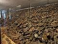 Auschwitz concentration camp I 16.JPG