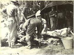 Black and white image of wounded men lying on canvas stretchers, while other soldiers attend to them