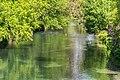 Avon River in Christchurch 07.jpg