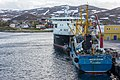 Båtsfjord - Fish carriers at the quay (2015).jpg