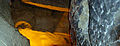 BELUM CAVES-Dr. Murali Mohan Gurram (57).jpg