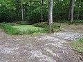 Balade en forêt d'Évreux 004.jpg