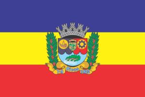 Bicas - Image: Bandeira de Bicas