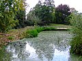 Baron's Pond - geograph.org.uk - 2629036.jpg