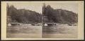 Bartlett's Bridge, by Jr. August.png