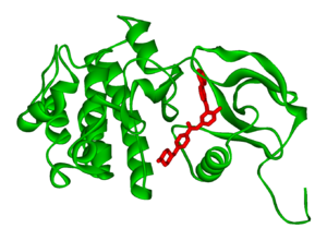 Crystal structure of the c-abl kinase domain (...