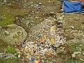 Beautiful Nature - Garbage Dump at Sonmarg Glacier - Jammu & Kashmir - India (26843490645).jpg