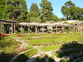 Berkeley Rose Garden - Image: Berkeley Rose Garden